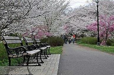 5-best-parks-in-newark-1016400324.jpg